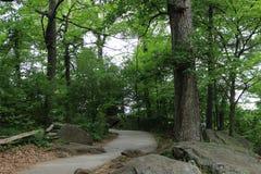 scenisk trail Royaltyfria Foton