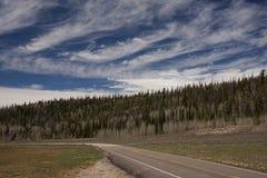 Scenisk Utah huvudväg 14 E Royaltyfri Bild