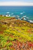 Scenisk utsikt på Kalifornien statrutt 1 arkivbilder
