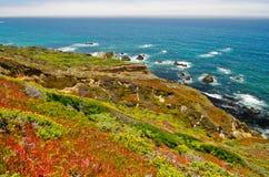Scenisk utsikt på Kalifornien statrutt 1 royaltyfria bilder