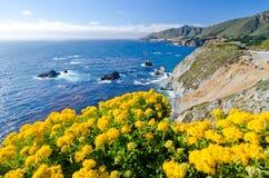 Scenisk utsikt på Kalifornien statrutt 1 fotografering för bildbyråer