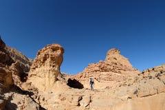 Scenisk vandring i Timna berg arkivfoto