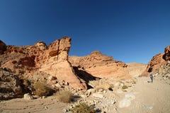 Scenisk vandring i Timna berg royaltyfria foton