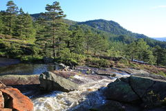 Scenisk vattenfall i Norge Royaltyfri Fotografi