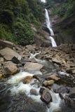 Scenisk vattenfall och flod Fotografering för Bildbyråer