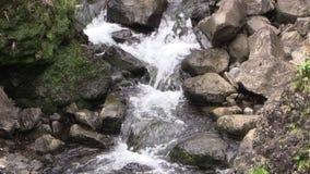 Scenisk vattenfall på Maui arkivfilmer
