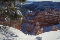 scenisk vinter för kanjon Arkivbild