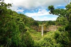 Sceniska Chamarel nedgångar i djungel av Mauritius Royaltyfria Foton