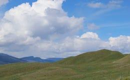 Sceniska gräskullar, fält och berg arkivbilder