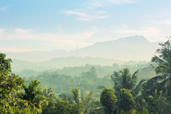 Sceniska gröna berganbdjungler, Ceylon Arkivbilder