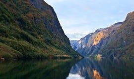 Sceniska landskap av de norska fjordarna Royaltyfri Fotografi