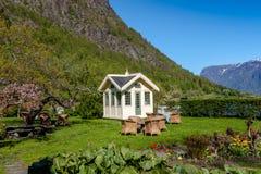 Sceniska landskap av de norska fjordarna Arkivfoton