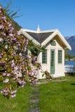 Sceniska landskap av de norska fjordarna Arkivfoto