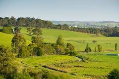Sceniska lantliga Australien Royaltyfri Fotografi