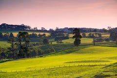 Sceniska lantliga Australien Arkivfoto
