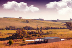 Sceniska lantliga Australien Arkivfoton