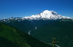 Sceniska Mount Rainier i staten Washington Arkivfoto
