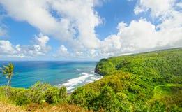 Sceniska tropiska Hawaii Kokosnötpalmträd, bränning, strand Solig dag för blå himmel stor hawaii ö Royaltyfri Bild