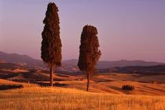 sceniska tuscan royaltyfri bild