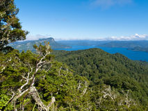 Sceniska Urewera NP med sjön Waikaremoana i NZ Arkivfoto