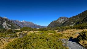 Sceniskt berglandskap längs Kea Point Track i den Aoraki monteringskocken National Park Fotografering för Bildbyråer