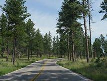 Sceniskt drev för visarhuvudväg, South Dakota arkivbild