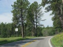 Sceniskt drev på visarhuvudvägen, South Dakota royaltyfri bild