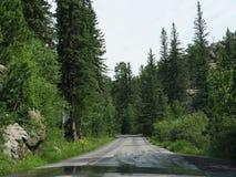 Sceniskt drev på visarhuvudvägen, South Dakota arkivbild