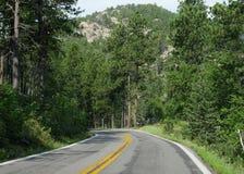 Sceniskt drev på visarhuvudvägen, South Dakota royaltyfri fotografi