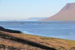 Sceniskt fjordlandskap i Island. Royaltyfria Foton