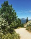 sceniskt gå för trail Royaltyfri Fotografi