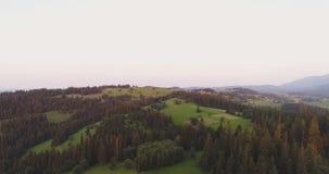 Sceniskt jordbruks- fält och skog mot himmel stock video