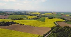 Sceniskt jordbruks- f?lt och skog mot himmel arkivfilmer