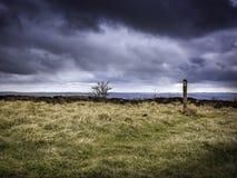 Sceniskt landskap av den maximala områdesnationalparken, Derbyshire, UK Royaltyfri Foto