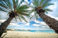 Sceniskt landskap av palmträd, turkosvatten och den tropiska stranden, Vai, Kreta arkivfoto
