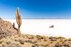 Sceniskt landskap för enorma för kaktusSalar De Uyuni ö berg för vulkan Arkivfoton