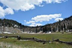 Sceniskt landskap i Rocky Mountain Royaltyfria Foton