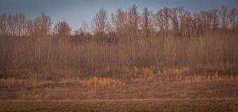 Sceniskt landskap nära Edwardsville Illinois Arkivfoton