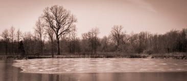 Sceniskt landskap nära Edwardsville Illinois Royaltyfri Foto