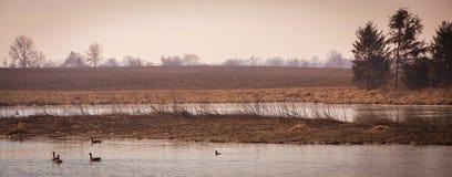Sceniskt landskap nära Edwardsville Illinois Fotografering för Bildbyråer