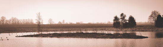 Sceniskt landskap nära Edwardsville Illinois Arkivbilder