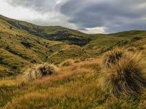 Sceniskt landskap på spåret till Washpen nedgångar, södra ö, Nya Zeeland arkivfoton