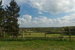 Sceniskt lantligt landskap som presenterar frodig jordbruksmark och staketet i Surr Royaltyfri Fotografi