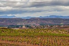 Sceniskt mulet landskap med vingårdar i La Rioja, Spanien, rutt Ventosa-Najera royaltyfria foton
