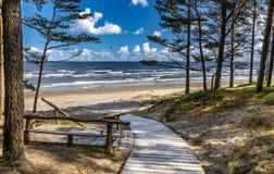 Sceniskt sikts- och vilaområde nära en sandig strand av Östersjön royaltyfri foto