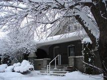 sceniskt snöig för arvhus arkivbild