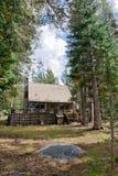 sceniskt trä för kabinskog Arkivfoton