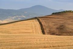 Sceniskt tuscan landskap med kullar och fältafetr som skördar du Arkivfoto