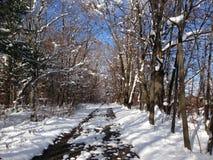 Sceniskt vinterdrev på solig dag Arkivbild