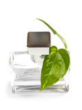 Scent bottle Stock Images
